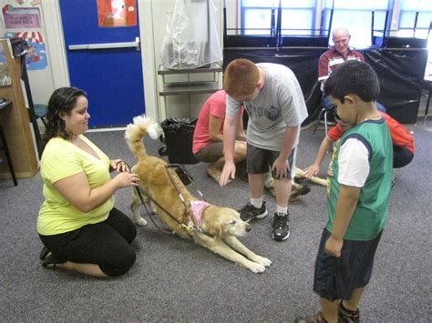 schools for service dogs high school volunteers eye service opportunity with guide nj