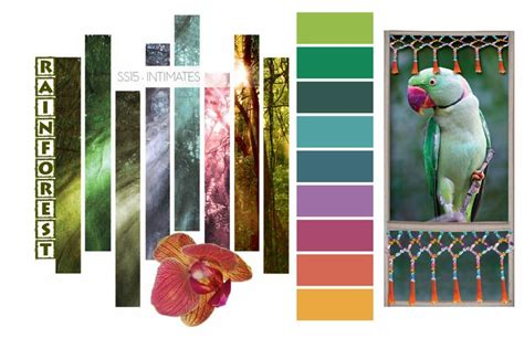 rainforest intimates color trends summer 2015 color trend rainforest color palette