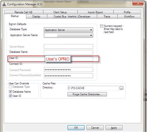 peoplesoft nvision issue resolution how to install