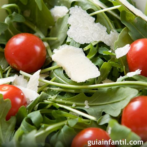 recetas de cocina sanas y faciles recetas sanas y f 225 ciles con r 250 cula