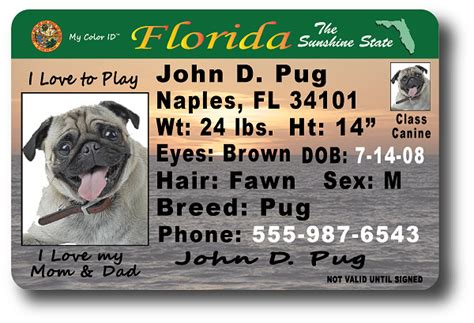 florida drivers license template florida drivers license template hqtracker