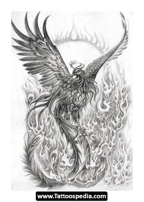 phoenix tattoo designs meaning meaning tattoospedia