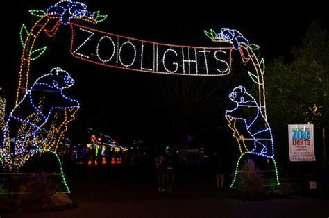 photos zoolights return for the holidays at the