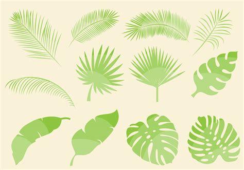 leaf pattern vector art vector template 187 leaf vectors free free vectors