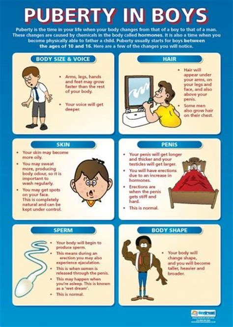 the stages of puberty in pictures 1000 images about puberty on pinterest kid student