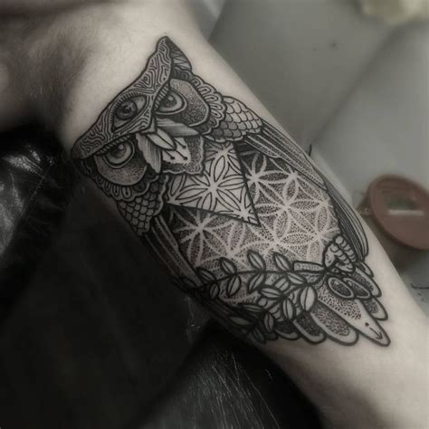owl tattoo dotwork 24 best three eyed owls images on pinterest owl owls