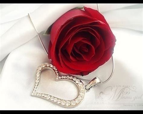 love you heart and roses i love you quotes with roses quotesgram