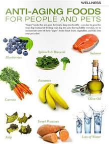 check out these quot super foods quot for your dog the lazy pit bull