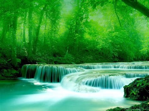wallpaper river water rocks trees greenery