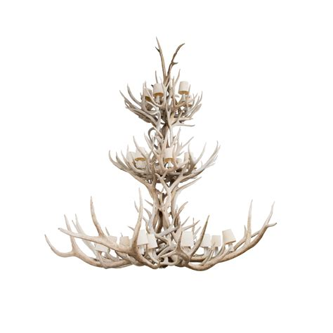 Deer Antler Chandelier For Sale Chandelier Mule Deer Antler Taxidermy Mounts For Sale And Taxidermy Trophies For Sale