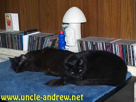 uncle andrew dot net uncle andrew dot net 187 2007 187 april