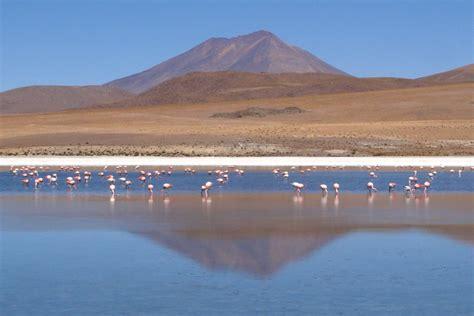 canapé ras du sol bolivie bolivia altiplano salar de chiguana laguna