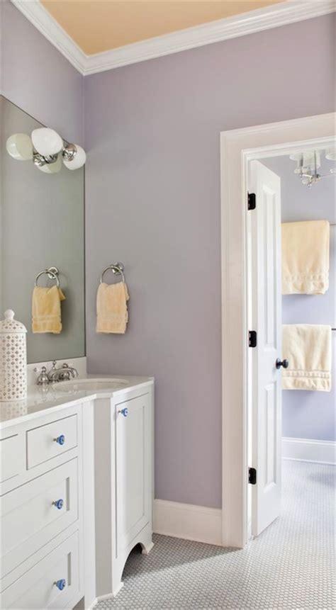 terracotta bathroom accessories lilac s bathroom transitional bathroom