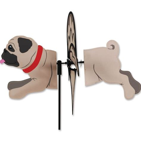 pug rescue near me best 25 pug rescue ideas on pug puppies pugs and pug rescue near me