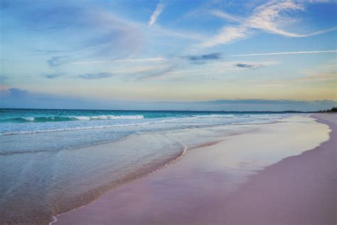 pink sand beach pink sand beach three bees villa