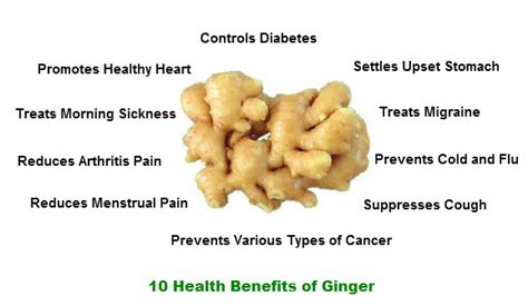 10 Health Benefits of Ginger   Top 10 Home Remedies