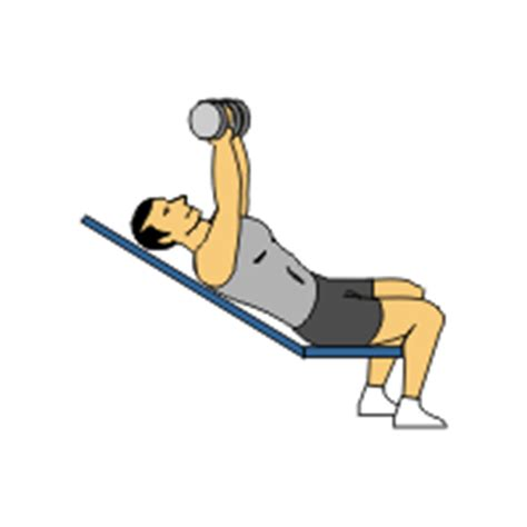 dumbel bench press dumbbell exercises complete with animated diagrams