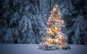weihnachtsbaum schneit windows 10 theme themepack me