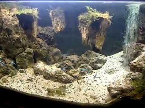 aquascape waterfall avatar pandora youtube