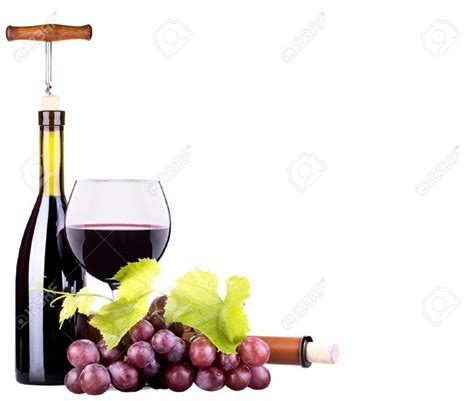 imagenes de vinos uvas 85 mejores im 225 genes sobre copas y botellas de vino en