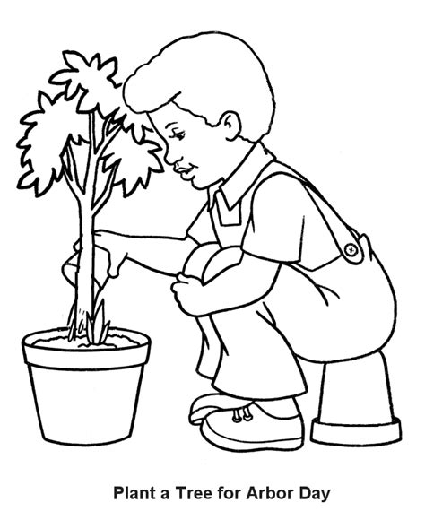 plants coloring pages preschool plants coloring page coloring home