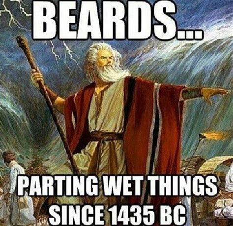 Bc Memes - top 60 best funny beard memes bearded humor and quotes