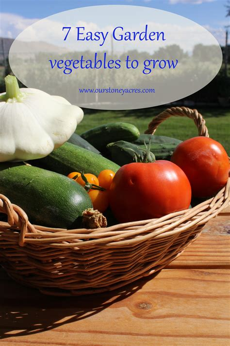 easy garden vegetables 7 easy vegetables to grow stoney acres