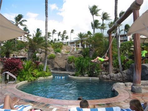 rope swing into pool beach just seconds from the pool area picture of grand