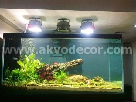desain aquarium air tawar aquarium air tawar design akvodecor aquarium air tawar