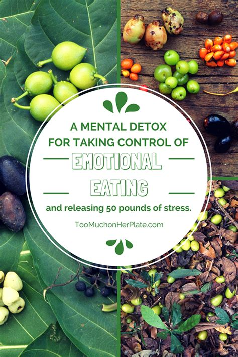 Doing A Mental Detox by A Mental Detox For Taking Of Emotional And