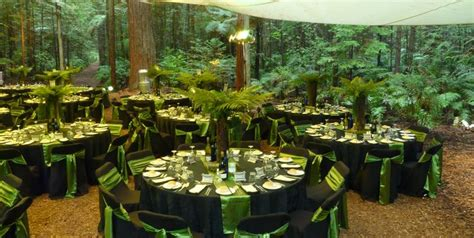 party themes new zealand new zealand native ferns google search my pinterest