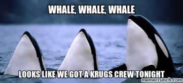 Whaling Meme - whale