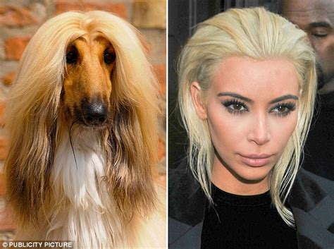 imagenes de memes de kim kardashian los memes de kim kardashian rubia mundotkm