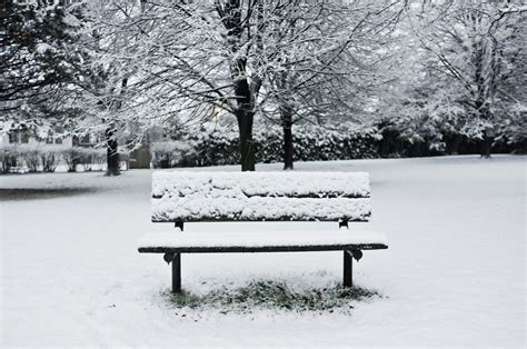 bench in snow file cold bench jpg
