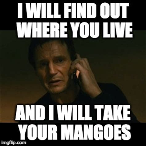 Mango Meme - liam neeson taken meme imgflip