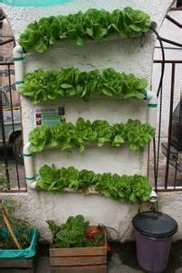 images  vertical hydroponic gardens  pinterest