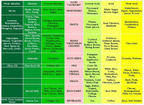 printable alkaline recipes top diet foods fresh food diet