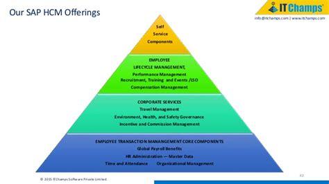 sap project systems  success factors