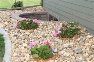 landscaping ground cover ideas ground cover