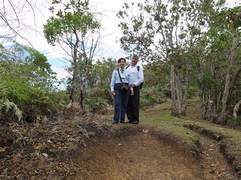 camino ecologico en el camino ecologico extaciados de la naturaleza صورة