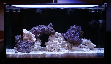 saltwater aquarium aquascape the use of negative space in the reef aquarium aquascape