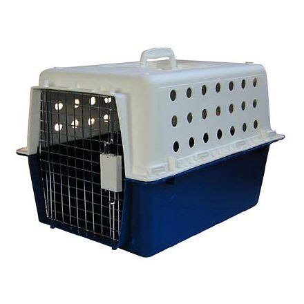 airline crate pp40 airline approved carrier crate crates and carriers ozpetshop