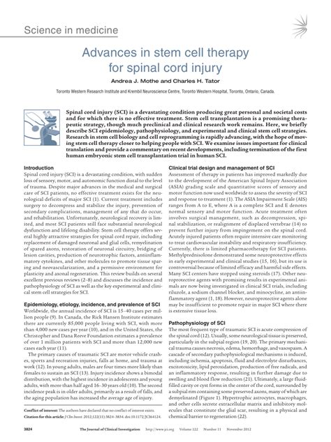 advances  stem cell therapy  spinal cord injury