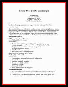 resume overview exles document