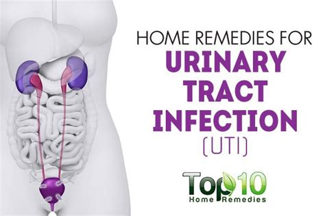 home remedies for urinary tract infection uti page 2