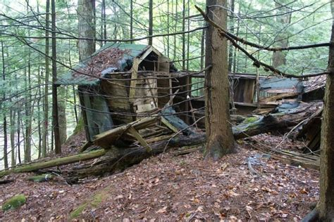 Shitty Cabin by You Guys Want Creepy Cabin In The Adirondacks Used To