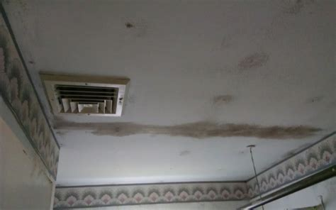 Treating Mould On Ceilings by Black Mold Health Issues Symptoms Treatment