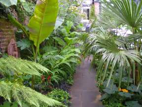 victoria s backyard going totally tropical in south london