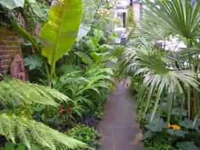 Concept Design For Tropical Garden Ideas S Backyard Going Totally Tropical In South