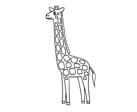related to dibujo jirafas para colorear paginas de dibujos jirafas dibujos para colorear y imprimir gratis perfect un ngel